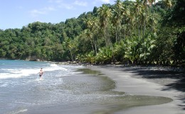 Plage anse couleuvre